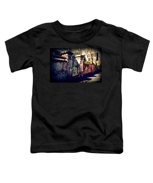 Old Iron Gate In Charleston Sc Toddler T-Shirt