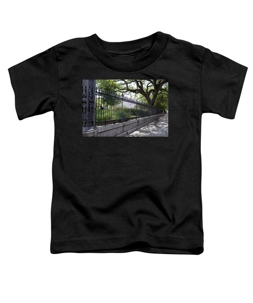 Old Tree And Ornate Fence Toddler T-Shirt