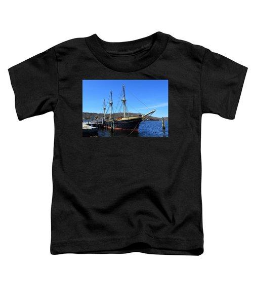 On Display Toddler T-Shirt
