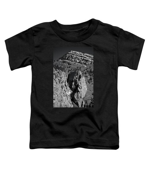 On Sandia Mountain Toddler T-Shirt