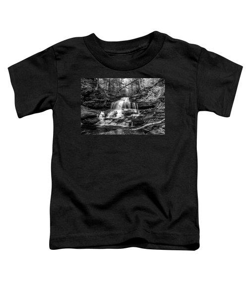Onondaga Falls - 8923 Toddler T-Shirt