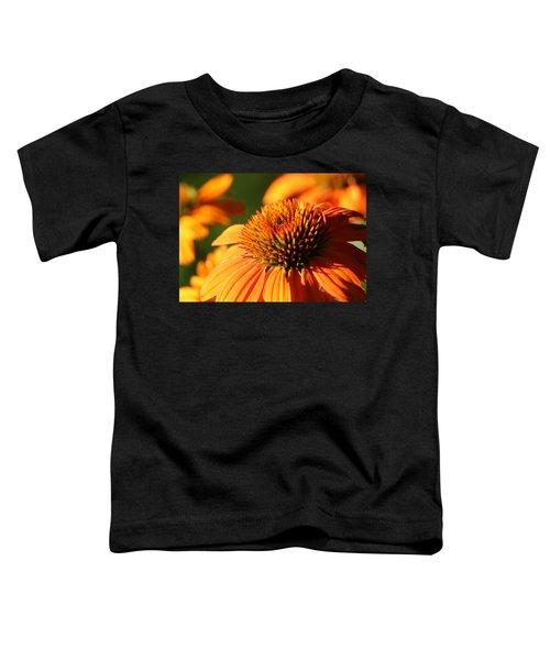 Orange Coneflower At First Light Toddler T-Shirt