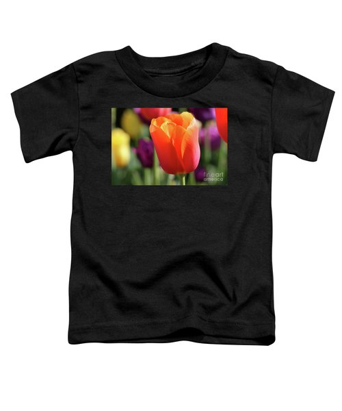 Orange Tulip In Franklin Park Toddler T-Shirt