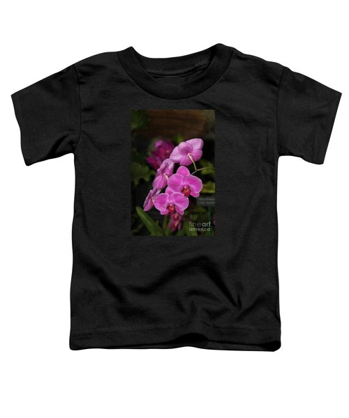 Orchids Alicia Toddler T-Shirt