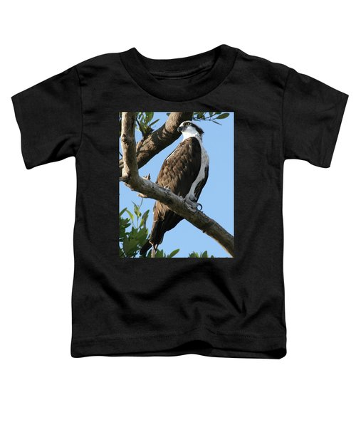 Osprey - Perched Toddler T-Shirt
