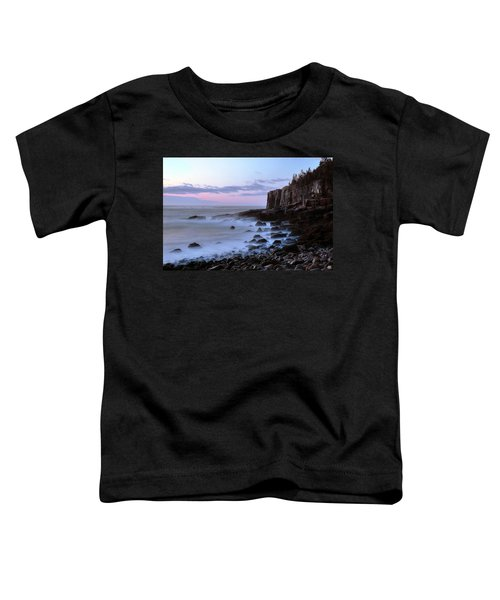 Otter Cliff Awash Toddler T-Shirt