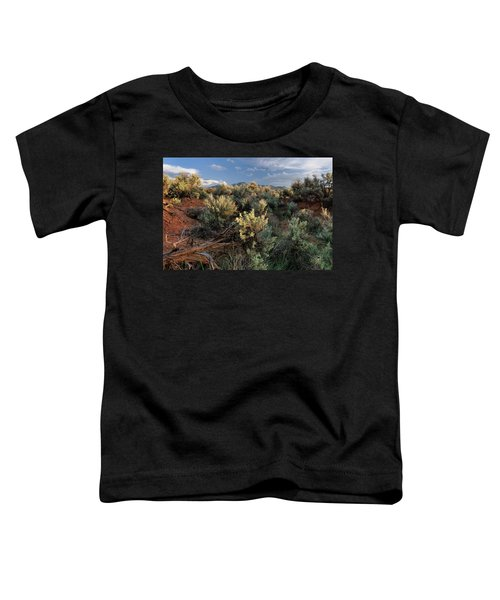 Out On The Mesa 7 Toddler T-Shirt