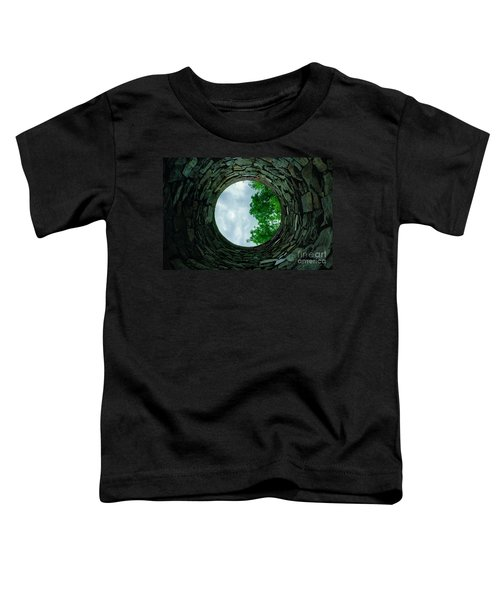 Ovens Long-silenced - Ruins At Old Iron Furnace Site Toddler T-Shirt