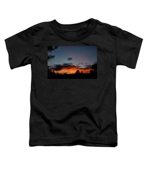 Pagosa Sunset 11-30-2014 Toddler T-Shirt