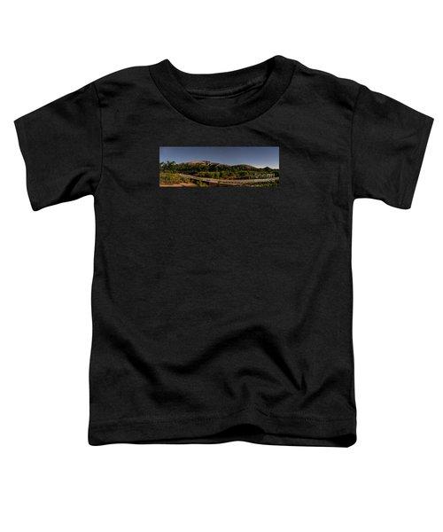 Panorama Of Enchanted Rock At Night - Starry Night Texas Hill Country Fredericksburg Llano Toddler T-Shirt