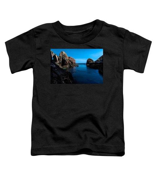 Paradise Lost At Sea Toddler T-Shirt