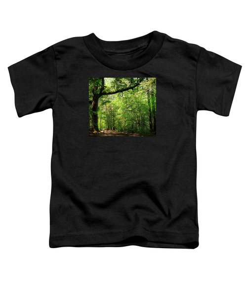 Paris Mountain State Park South Carolina Toddler T-Shirt