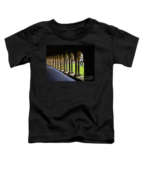 Passage To The Ancient Toddler T-Shirt