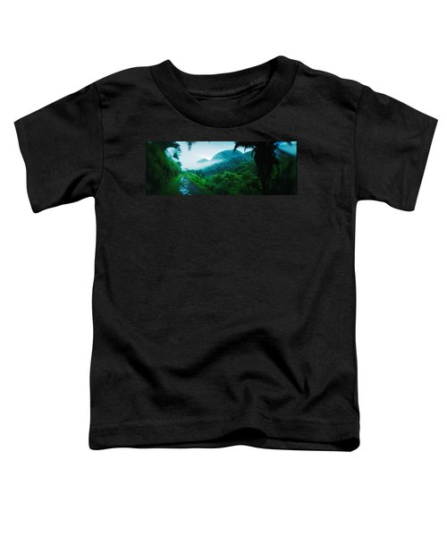 Path In A Rainforest, Cayo District Toddler T-Shirt