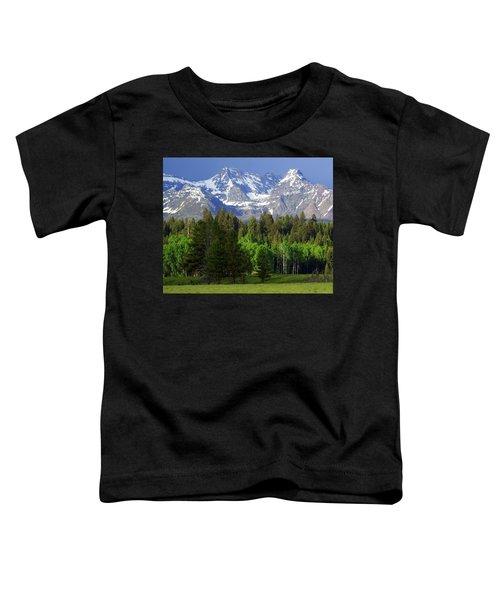 Peaks Toddler T-Shirt