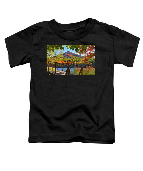 Peaks Of Otter Bridge Toddler T-Shirt