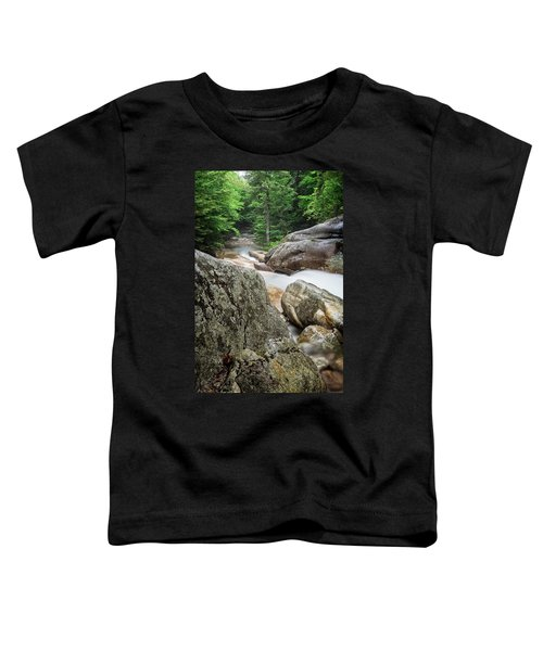 Pemi Above Basin Toddler T-Shirt