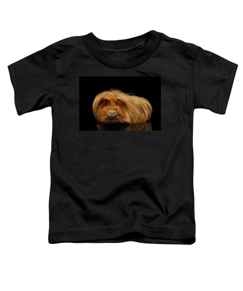 Trump Guinea  Toddler T-Shirt