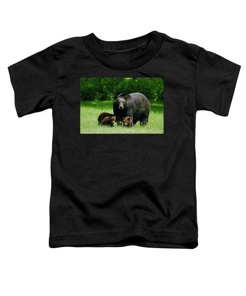 Picnic Crashers Toddler T-Shirt