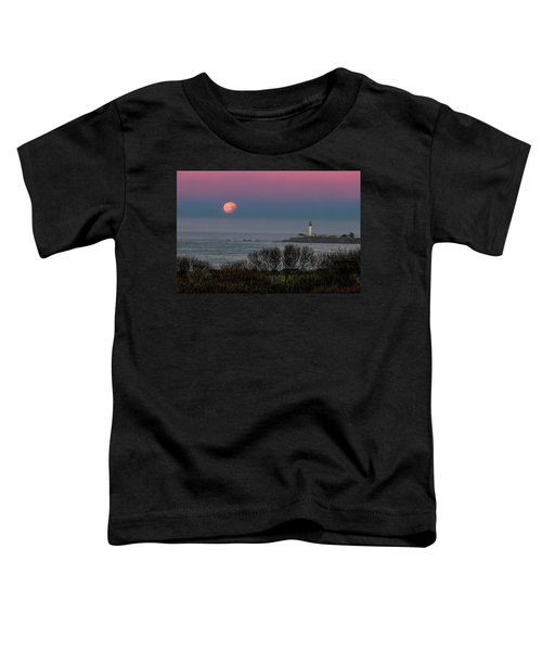 Pigeon Point Supermoon Toddler T-Shirt