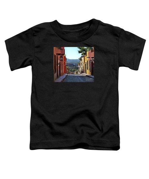 Pila Seca Toddler T-Shirt