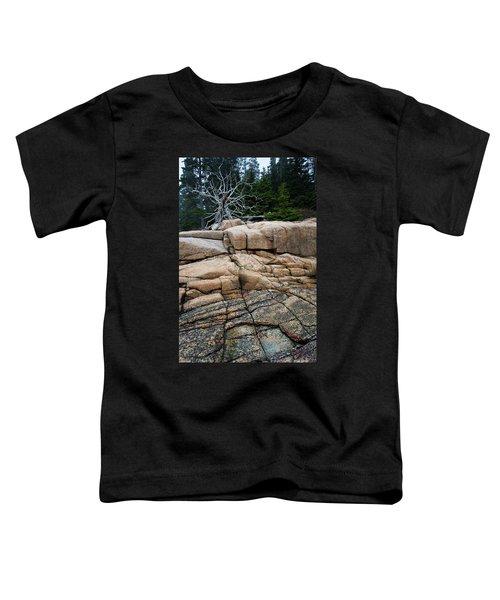 Pink Granite And Driftwood At Schoodic Peninsula In Maine  -4672 Toddler T-Shirt