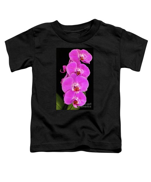 Pink Orchid Against A Black Background Toddler T-Shirt