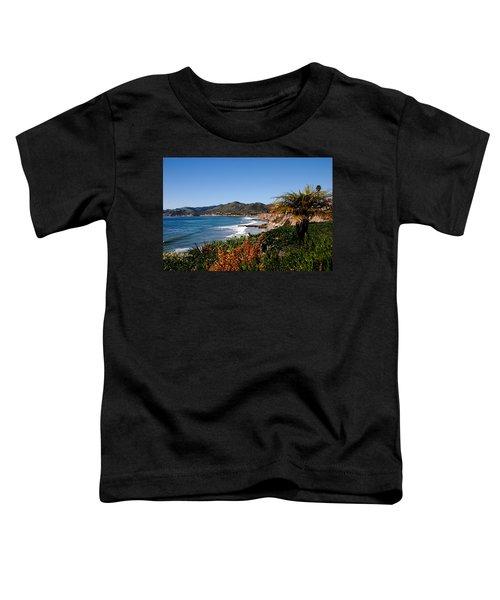 Pismo Beach California Toddler T-Shirt