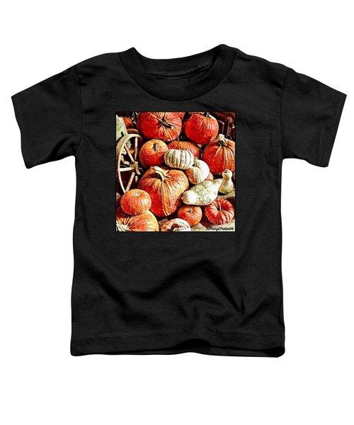 Pumpkins In The Barn Toddler T-Shirt