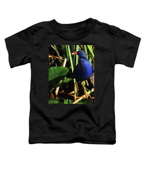 Purple Gallinule Toddler T-Shirt