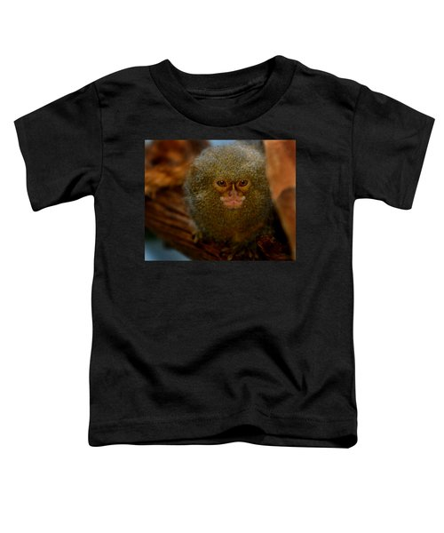 Pygmy Marmoset Toddler T-Shirt