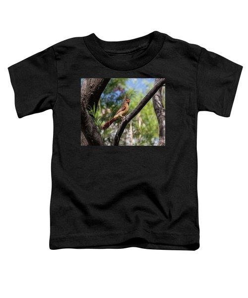 Pyrrhuloxia At Work Toddler T-Shirt