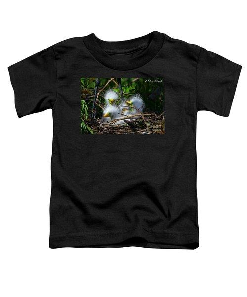 Quadruplets Toddler T-Shirt
