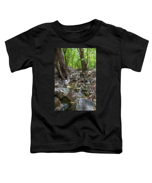 Ramsey Canyon Preserve Toddler T-Shirt