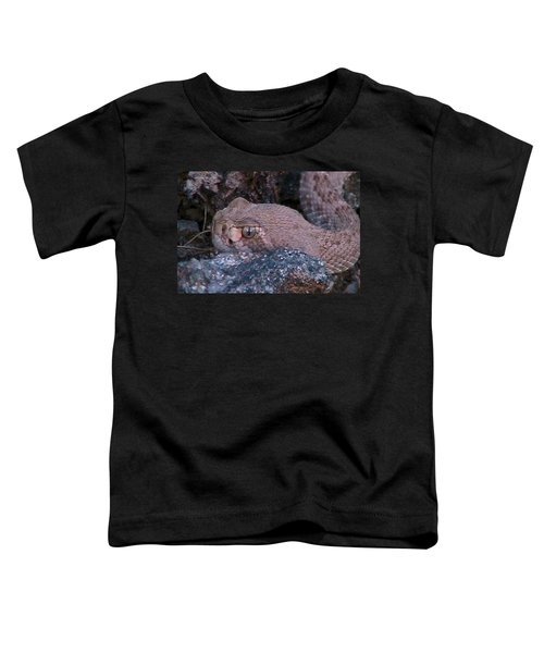 Rattlesnake Portrait Toddler T-Shirt