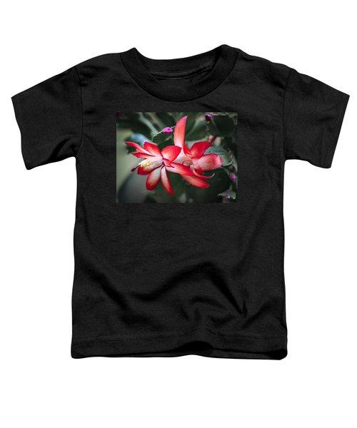 Red Christmas Cactus Toddler T-Shirt