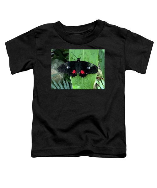 Red Design On Wings Toddler T-Shirt