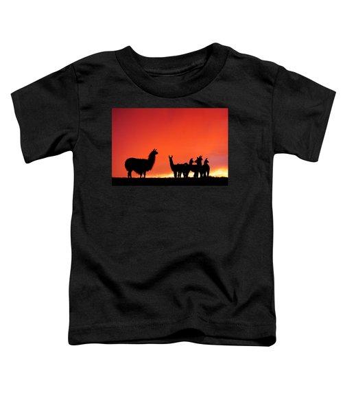 Red Llama Sunset 2 Toddler T-Shirt