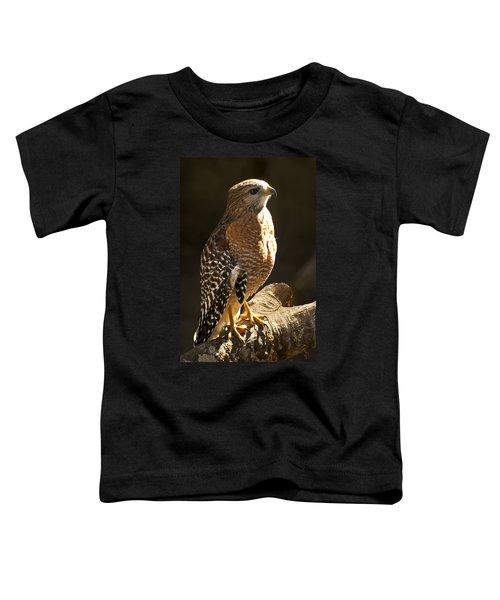 Red-shouldered Hawk Toddler T-Shirt