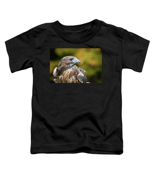 Red Tail Hawk Toddler T-Shirt