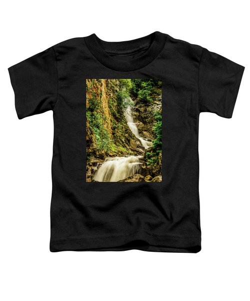 Reid Falls Toddler T-Shirt