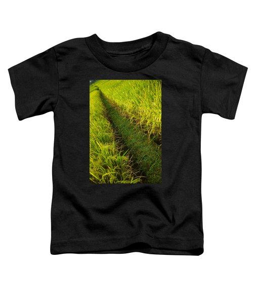 Rice Field Hiking Toddler T-Shirt