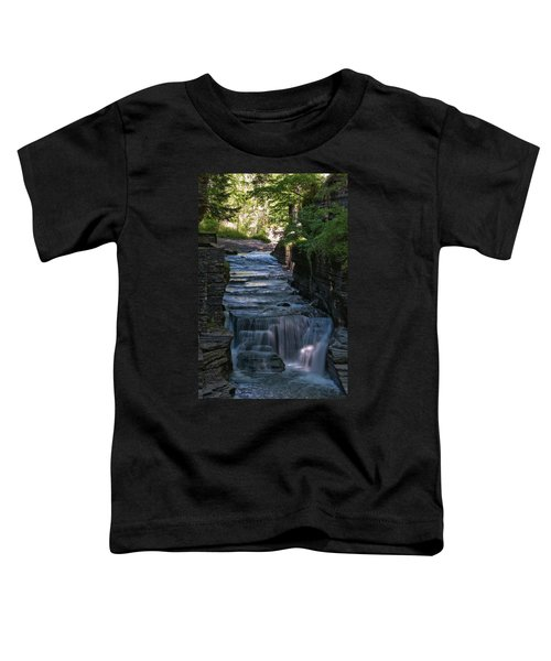 Robert Treman 0512 Toddler T-Shirt
