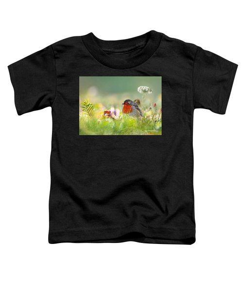 Robin Red Breast Toddler T-Shirt