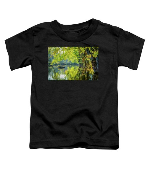 Rock At Sunrise Toddler T-Shirt