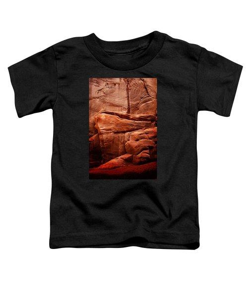 Rock Face Toddler T-Shirt