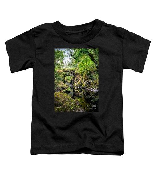 Roman Packhorse Bridge Toddler T-Shirt