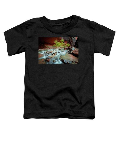 Rush At Narrows Toddler T-Shirt