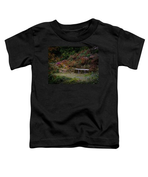 Toddler T-Shirt featuring the photograph Rustic Bench In The Autumn Irish Countryside by James Truett