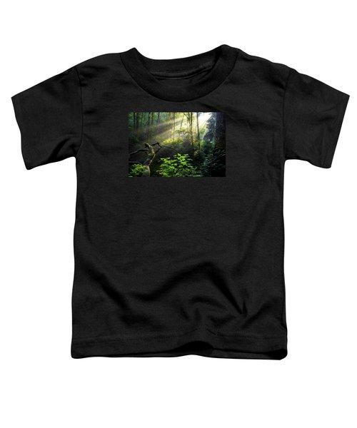 Sacred Light Toddler T-Shirt